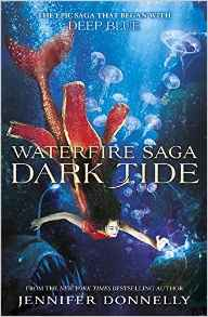 waterfire3